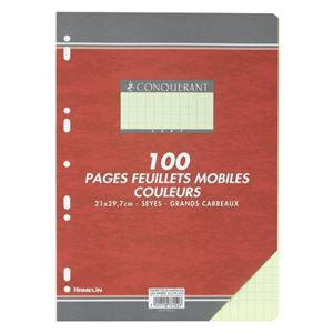 CONQUERANT - FEUILLES SIMPLES A4 21X29,7CM 100 FEUILLES JAUNES 80G SEYES PERFOREES